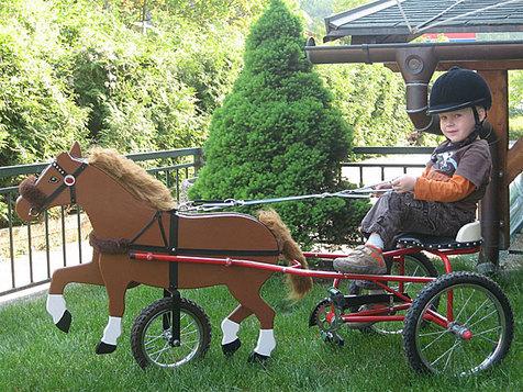 slika: Konjeniška oprema Poni